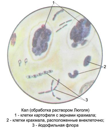 http://medicalhandbook.ru/images/diagnostics/95-kal.jpg